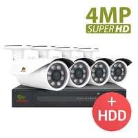 4.0MP Набор для улицы PRO AHD-29 4xCAM + 1xDVR + HDD